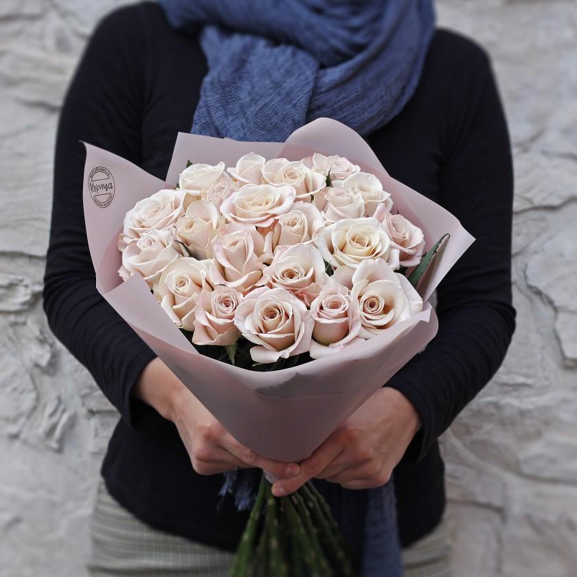 Пудровая роза