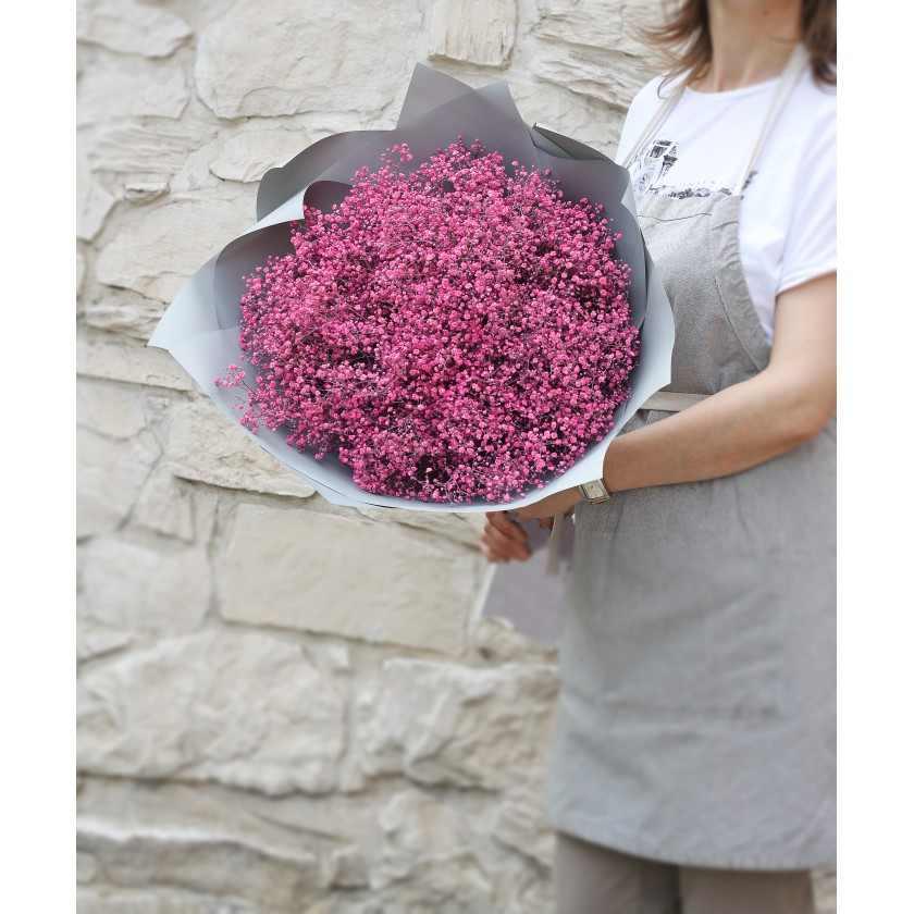 Облако розовой гипсофилы
